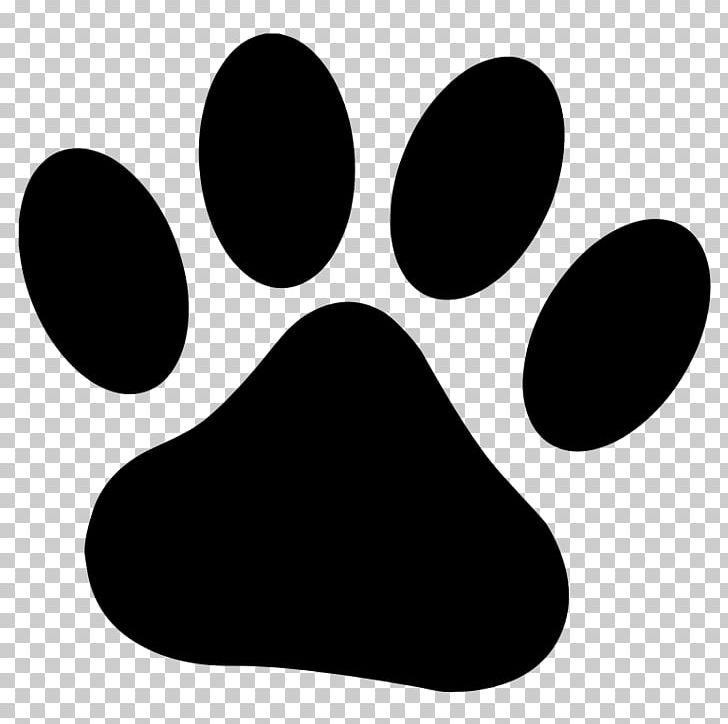 Dog Paw Drawing Cat PNG, Clipart, Animals, Animal Track, Black, Black And White, Cat Free PNG Download