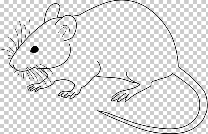 Laboratory Mouse Laboratory Rat Drawing PNG, Clipart, Animal Figure, Animals, Artwork, Black And White, Black Rat Free PNG Download