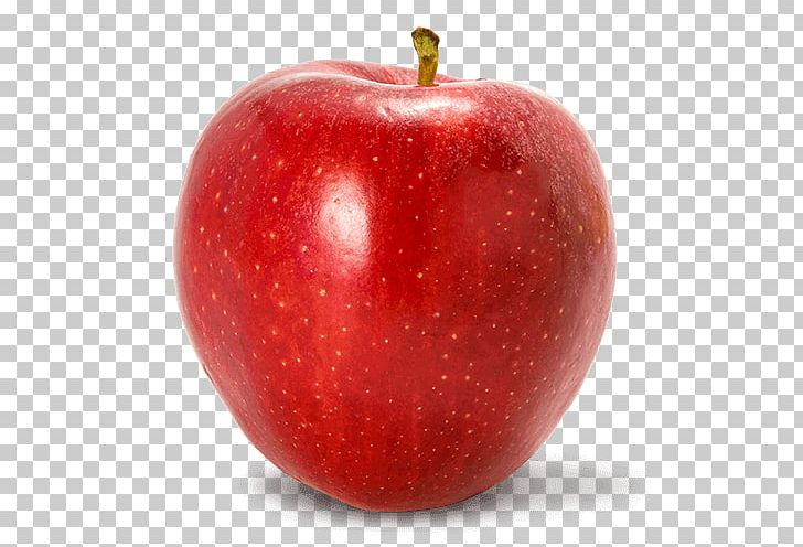 Red Delicious Apple Clip Art - Royalty Free - GoGraph