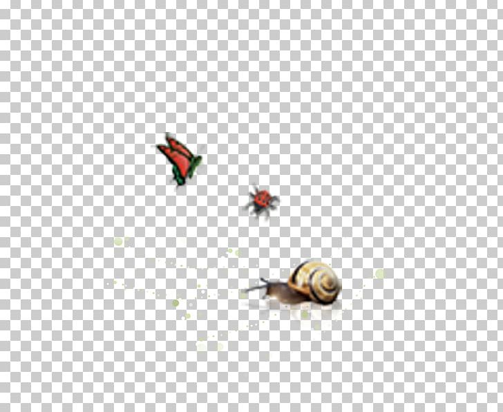 Butterfly Snail Escargot Animal PNG, Clipart, 3d Animation