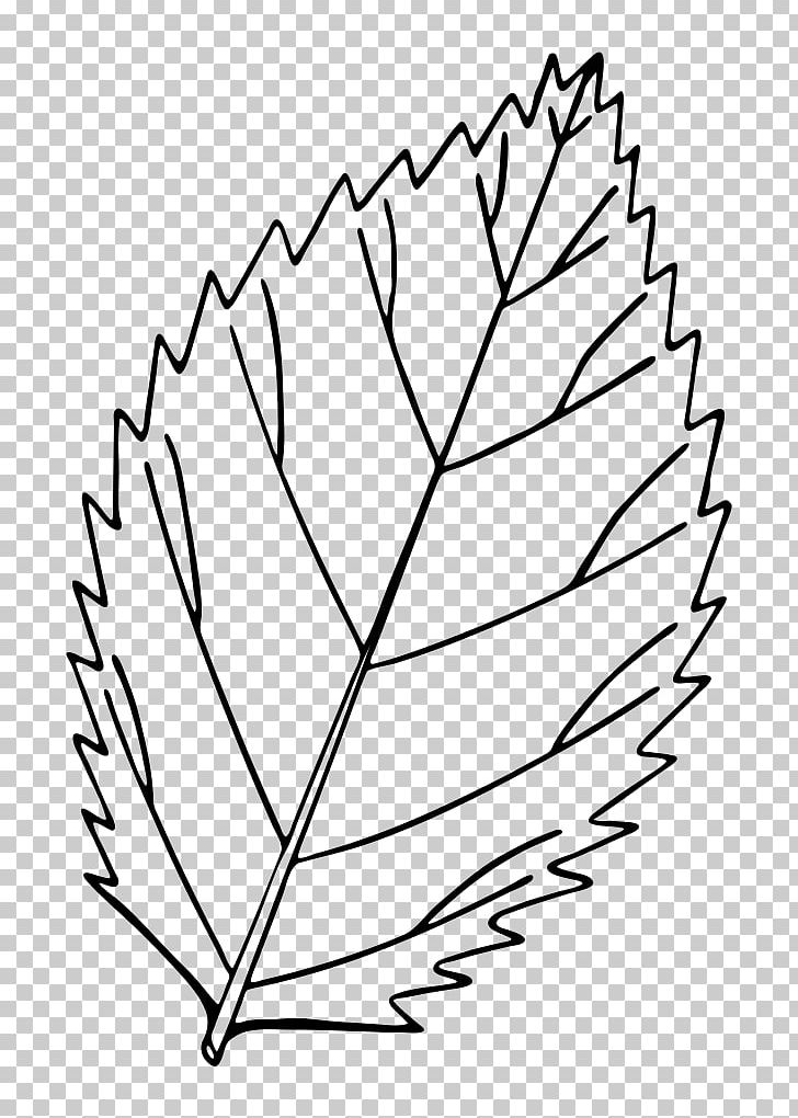 Autumn Leaf Color Drawing Red Maple PNG, Clipart, Angle, Area, Autumn, Autumn Leaf Color, Black And White Free PNG Download