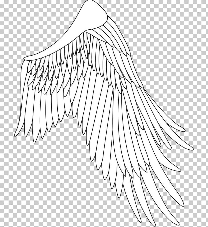 Line Art Drawing White /m/02csf Point PNG, Clipart, Angle, Animals, Area, Artwork, Avatan Free PNG Download