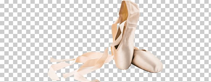 Ballet Shoes PNG, Clipart, Ballet Shoes, Clothes Free PNG Download