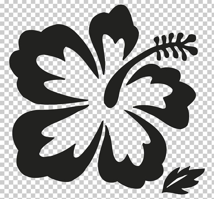 Hawaii Flower Drawing Png Clipart Black And White Branch