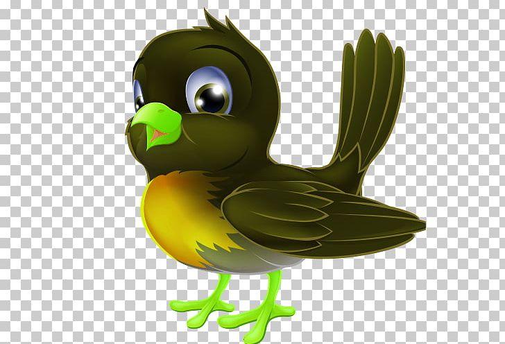 European Robin Bird Cartoon Drawing Png Clipart Animals Balloon