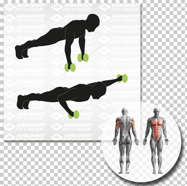Human Body Muscle Anatomy Myofascial Trigger Point Muscular System PNG, Clipart, Adductor Muscles Of The Hip, Anatomy, Biofeedback, Exercise, Hand Free PNG Download