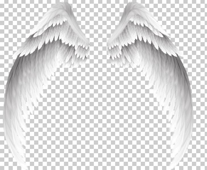 Angel PNG, Clipart, Angel, Angels, Angel Wing, Angel Wings, Black And White Free PNG Download