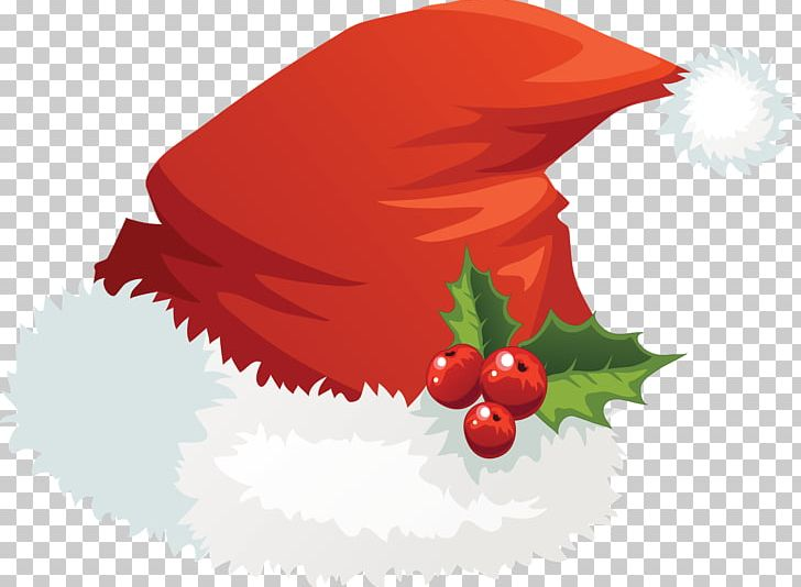 Santa Claus Santa Suit Hat PNG, Clipart, Cap, Christmas, Christmas Elf, Christmas Ornament, Fictional Character Free PNG Download