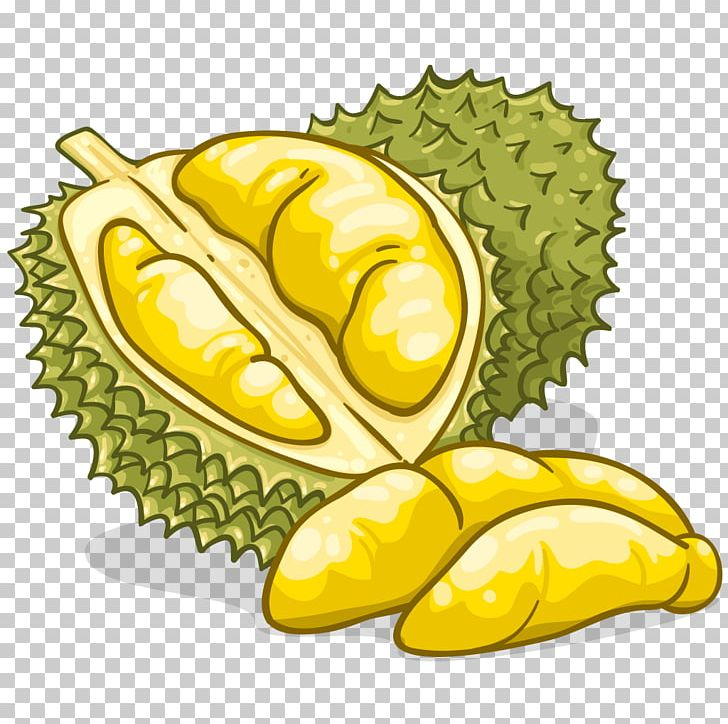 Durian Food Flavor Fruit Png Clipart Cartoon Clip Art