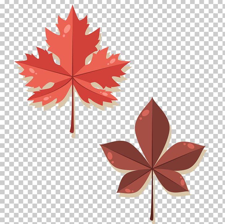 Maple Leaf Autumn PNG, Clipart, Animation, Autumn, Autumn Leaf Color, Autumn Leaves, Banana Leaves Free PNG Download