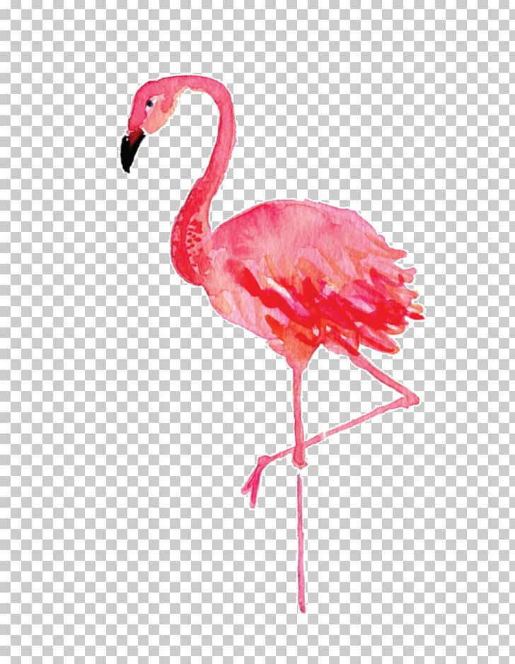 Stephenville Flamingo Watercolor Painting Drawing Canvas PNG, Clipart, Animals, Art, Beak, Bird, Canvas Free PNG Download