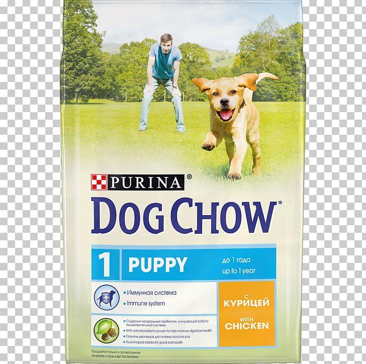 Puppy Dog Chow Dog Food Nestlé Purina PetCare Company Chow