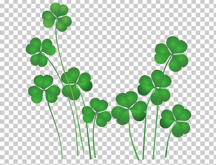 Ireland St. Patricks Day Shamrocks Saint Patricks Day National ShamrockFest Public Holiday PNG, Clipart, Clover, Flowering Plant, Grass, Green, Holiday Free PNG Download