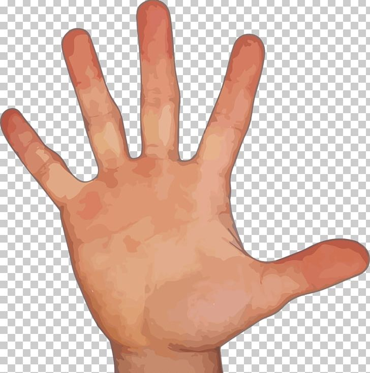 Middle finger index. Png clipart arm digit