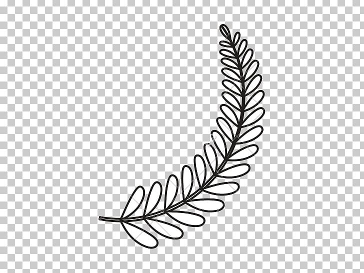 View Leaf Ornament Png