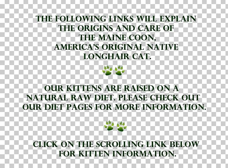 Maine Coon Raccoon Kitten Breed PNG, Clipart, Animals, Brand, Breed, Cat, Document Free PNG Download