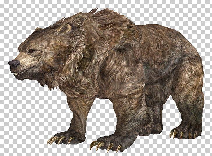 Grizzly Bear The Elder Scrolls V: Skyrim Cave Bear Polar