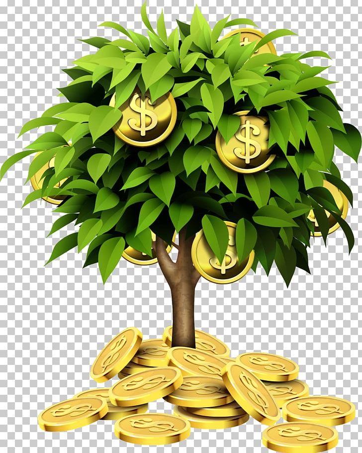 Individual Retirement Account Tree Investment Saving Money