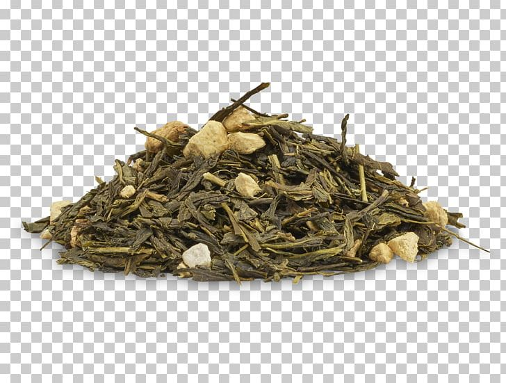 Green Tea Hōjicha Nilgiri Tea Oolong PNG, Clipart, Baihao Yinzhen, Bai Mudan, Bancha, Biluochun, Ceylon Tea Free PNG Download
