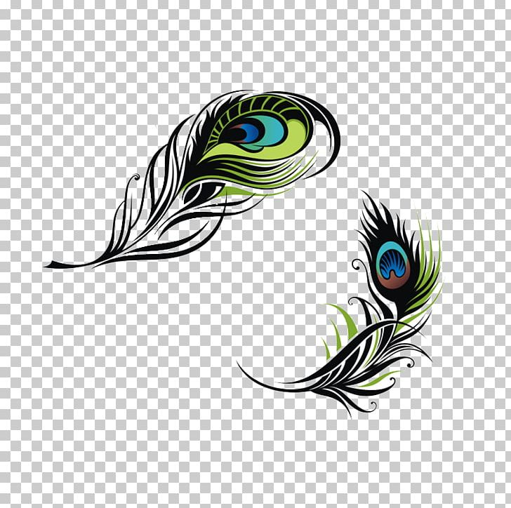 Bird Feather Peafowl Euclidean PNG, Clipart, Animals, Bird, Color, Colored, Colored Feathers Free PNG Download
