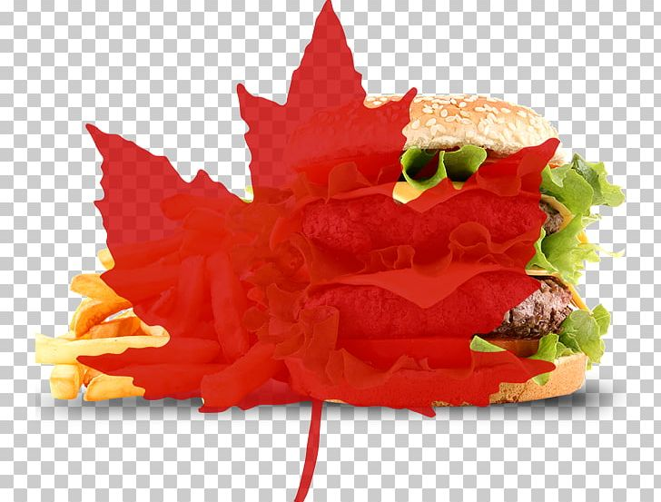 Flag Of Canada Maple Leaf PNG, Clipart, Canada, Canada Day, Fast Food, Flag Of Canada, Flower Free PNG Download