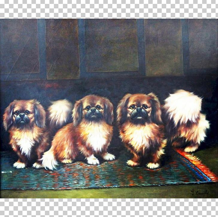 Pekingese Shih Tzu Chinese Imperial Dog Tibetan Spaniel Oil Painting