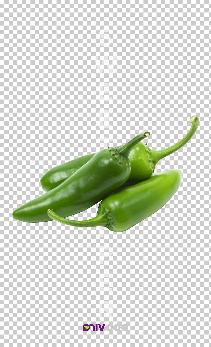 Chili Con Carne Stuffing Jalapeño Bell Pepper Chili Pepper PNG, Clipart, Bell Pepper, Bell Peppers And Chili Peppers, Birds Eye Chili, Cayenne Pepper, Chili Pepper Free PNG Download