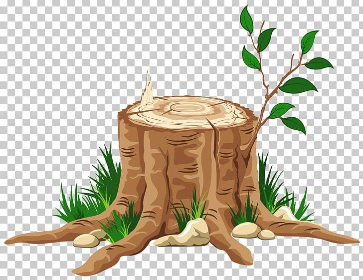 Advent jesse tree. Of bible the symbol