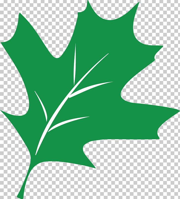 Plant Stem Leaf Flowering Plant PNG, Clipart, Artwork, Branch, Branching, Flora, Flower Free PNG Download
