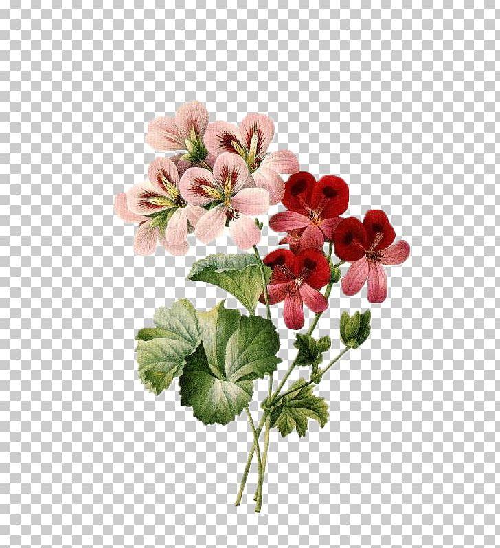 Flower Bouquet Vintage Clothing Floral Design PNG, Clipart, Antique, Blossom, Botanical Illustration, Clip Art, Color Free PNG Download
