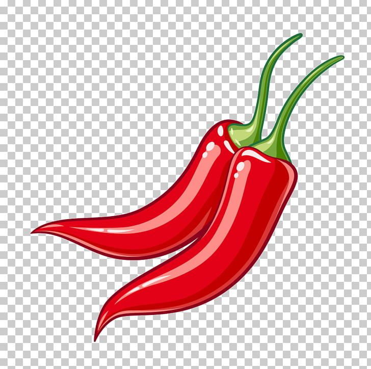 Serrano Pepper Bird's Eye Chili Cayenne Pepper Tabasco Pepper Chili Pepper PNG, Clipart, Bell Pepper, Bell Peppers And Chili Peppers, Birds Eye Chili, Chili, Food Free PNG Download