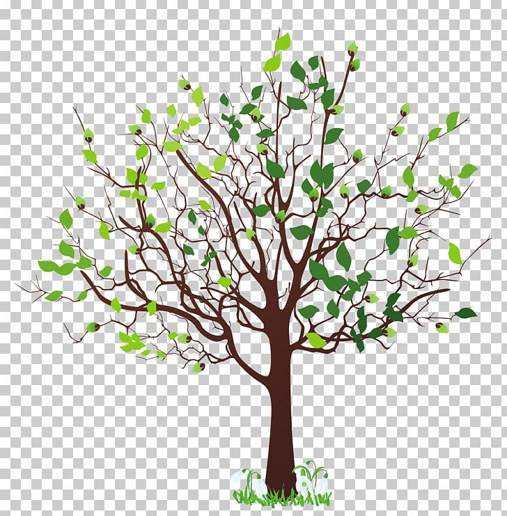 Spring Tree PNG, Clipart, Autumn, Blossom, Branch, Clipart, Clip Art Free PNG Download