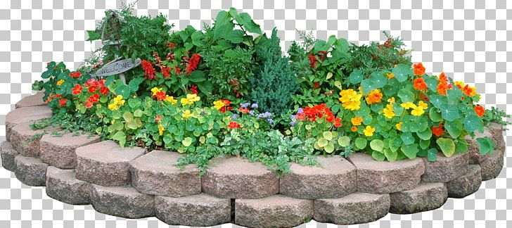 flower garden parterre png clipart 2pop clip art computer software drawing flower free png download flower garden parterre png clipart