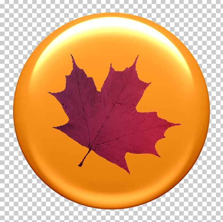 Paper Maple Leaf Autumn Leaf Color PNG, Clipart, Autumn, Autumn Leaf Color, Business Cards, Japanese Maple, Landscape Free PNG Download