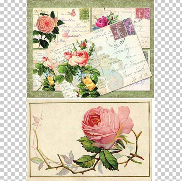 Floral Design Garden Roses Cut Flowers Greeting & Note Cards PNG, Clipart, Art, Cut Flowers, Flora, Floral Design, Floristry Free PNG Download