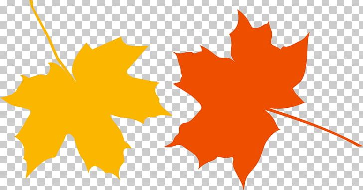 Japanese Maple Autumn Leaf Color PNG, Clipart, Autumn, Autumn Leaf Color, Autumn Leaves, Color, Computer Wallpaper Free PNG Download