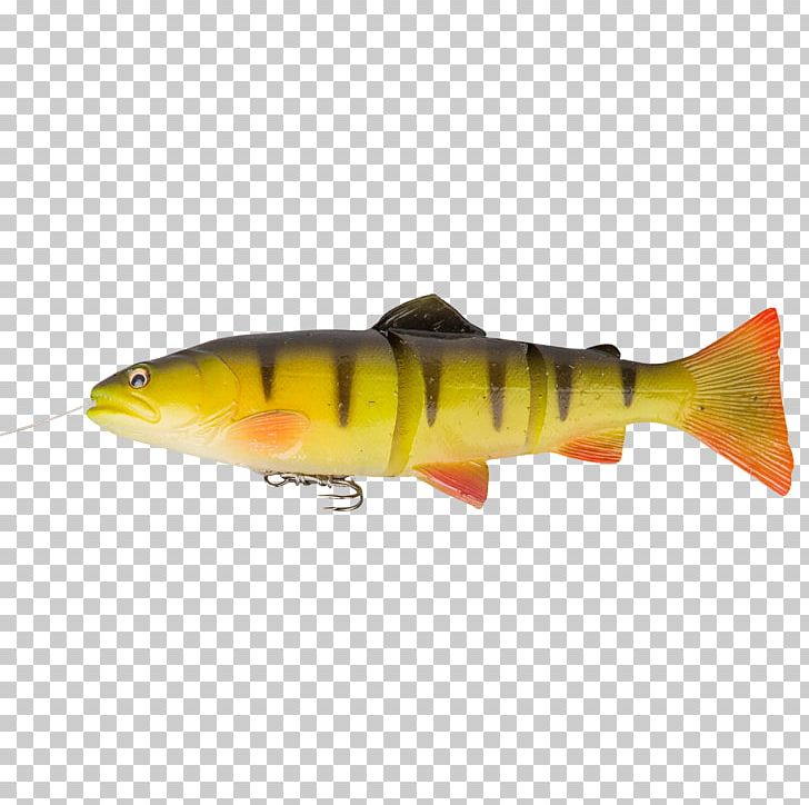 Trout Fishing Baits & Lures Perch PNG, Clipart, Angling, Bait, Bass, Bony Fish, Brown Trout Free PNG Download