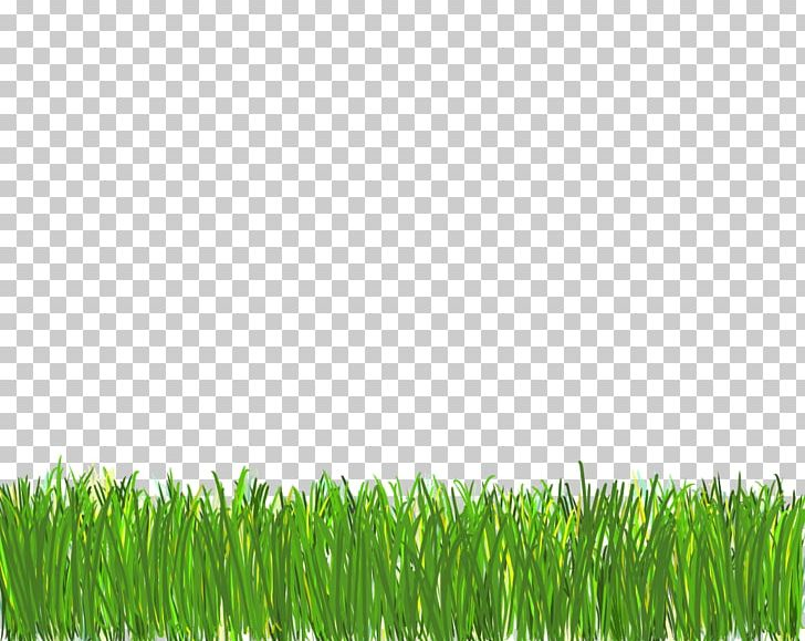 Lawn Computer Icons Desktop PNG, Clipart, Art Designs, Clip Art, Commodity, Computer Icons, Desktop Wallpaper Free PNG Download