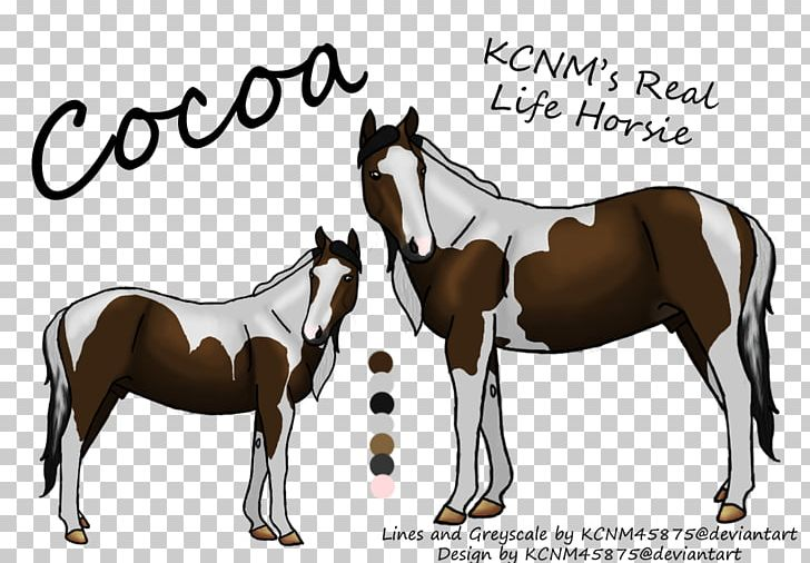 Stallion Mustang Foal Colt Mare PNG, Clipart, Bridle, Colt, Foal, Halter, Horse Free PNG Download