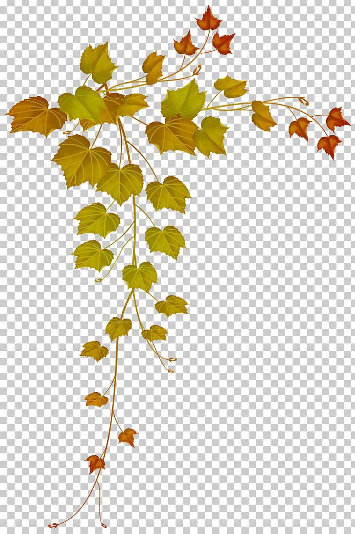 Autumn Leaf Color Autumn Leaf Color Maple Leaf PNG, Clipart, Area, Art, Autumn, Autumn Leaf Color, Branch Free PNG Download