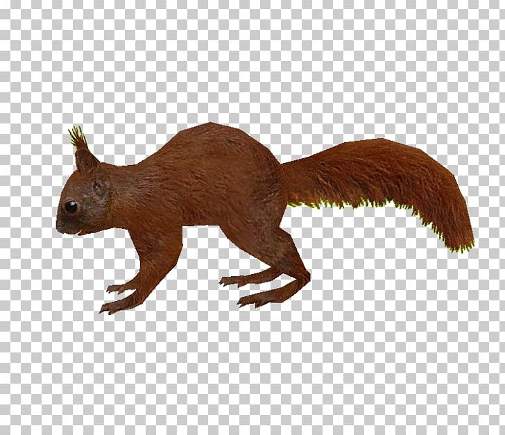 Zoo Tycoon 2: Extinct Animals Squirrel Rodent PNG, Clipart