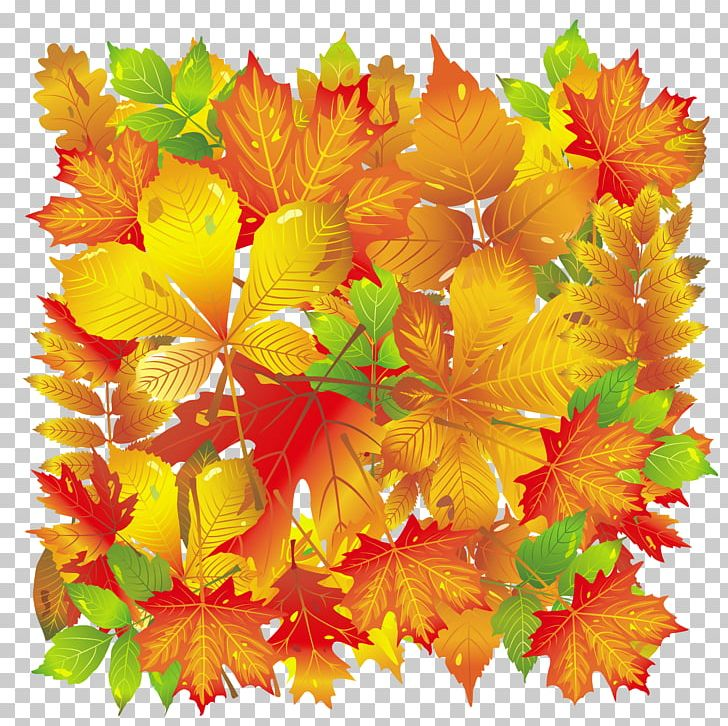 Autumn Leaf Color PNG, Clipart, Autumn, Autumn Leaf Color, Clipart, Encapsulated Postscript, Fall Free PNG Download