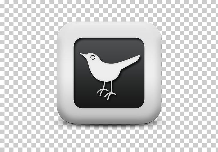 Social Media Social Networking Service Computer Icons Blog PNG, Clipart, Beak, Bird, Blog, Communication, Computer Icons Free PNG Download