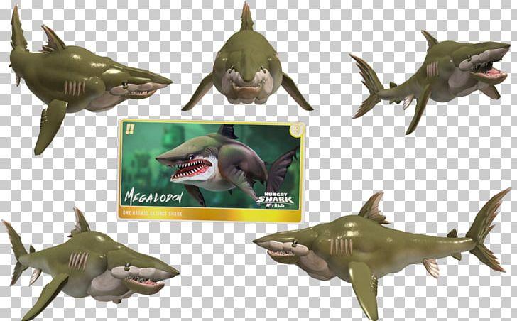 Hungry Shark World Hungry Shark Evolution Megalodon Great