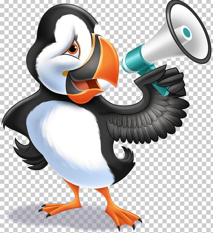Ocean Penguin Sea Coral Reef PNG, Clipart, 2016, 2017, 2018, Beak, Bird Free PNG Download