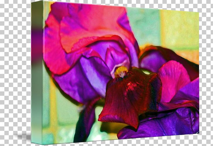 Acrylic Paint Pansy Rose Family Floral Design Violet PNG, Clipart, Acrylic Resin, Art, Family, Floral Design, Flower Free PNG Download