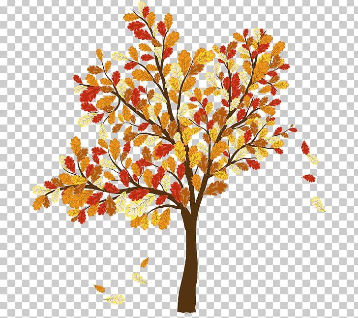 Autumn Leaf Color Tree PNG, Clipart, Autumn, Autumn Leaf Color, Banner, Branch, Clip Art Free PNG Download
