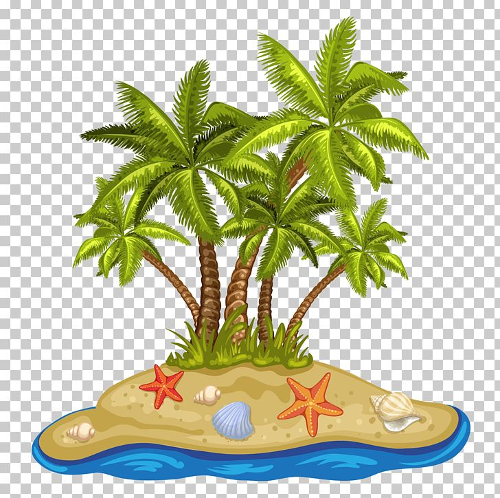 Beach coconut. Cartoon summer tree png