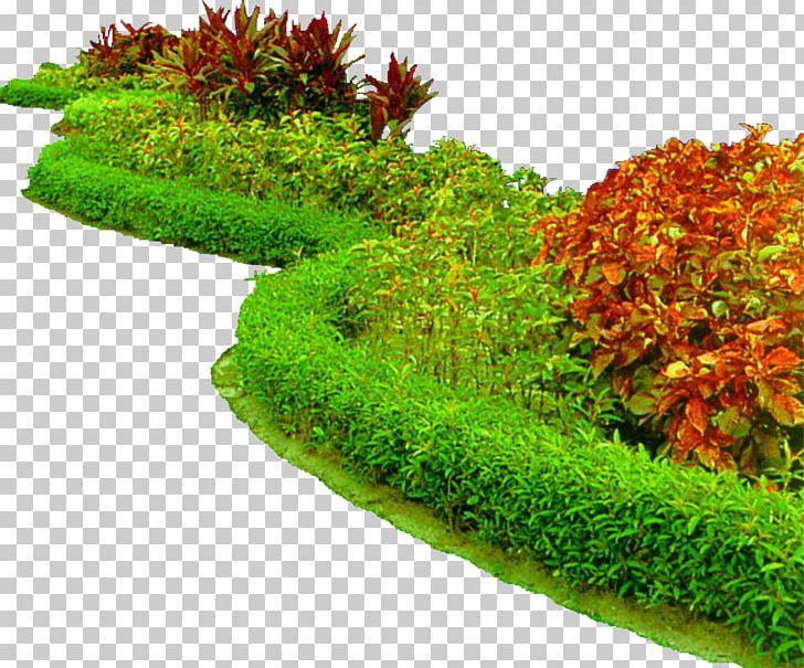 Flower Garden Raised-bed Gardening Garden Design PNG ... on natural water fountain design, natural building design, natural walkways, natural bird house design, leather bed design, natural landscaping design, natural wood design,