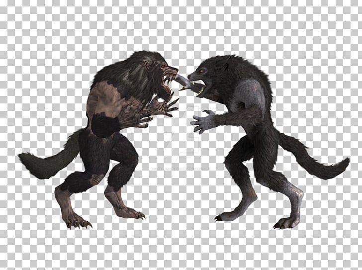 How to get infinite werewolf in skyrim